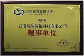 云南省互联网协会理事单位