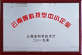 """""""云南省科技型中小型企业"""